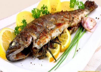 RG Fish 1